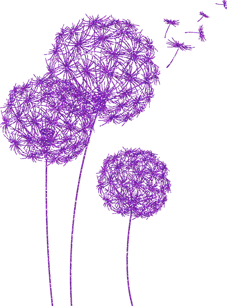 dandelions, purple glitter, dandelion flower